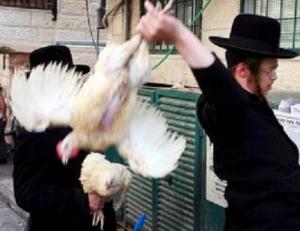 Funny Jewish Humor Vegan Zionist joke